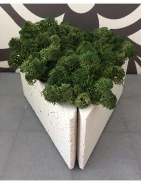 Donica trójkątna z chrobotkiem