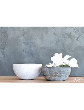 Concrete bowl pilea