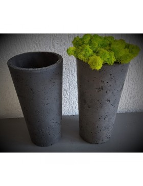 Concrete pot with moss...