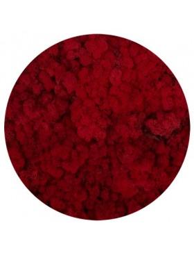 Mech chrobotek red 50g
