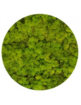 Mech chrobotek spring green...