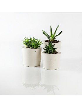 A Set Of Pots Concrete...