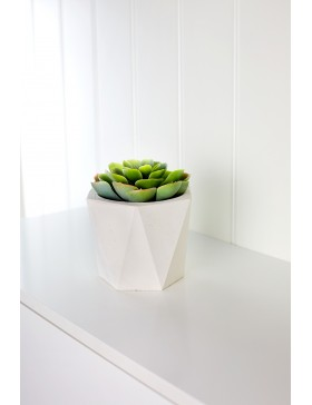 Concrete pot Evona