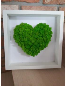 Obraz z chrobotka-serce