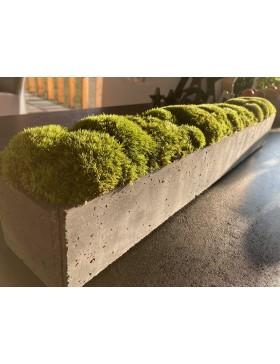 Donica betonowa z mchem...