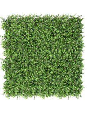 Zielona ściana Fumaria 40x60cm