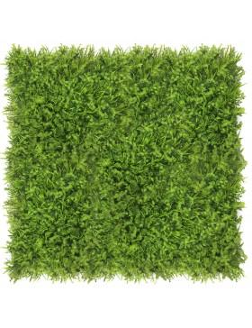 Zielona ściana Fenkuł 40x60cm