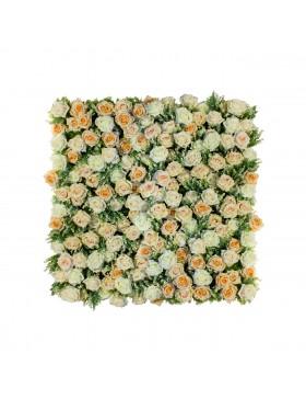 Ścianka z róż Gentle Morning