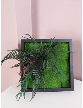Obraz z mchu i roślin